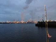 Makreel vissen IJmuiden